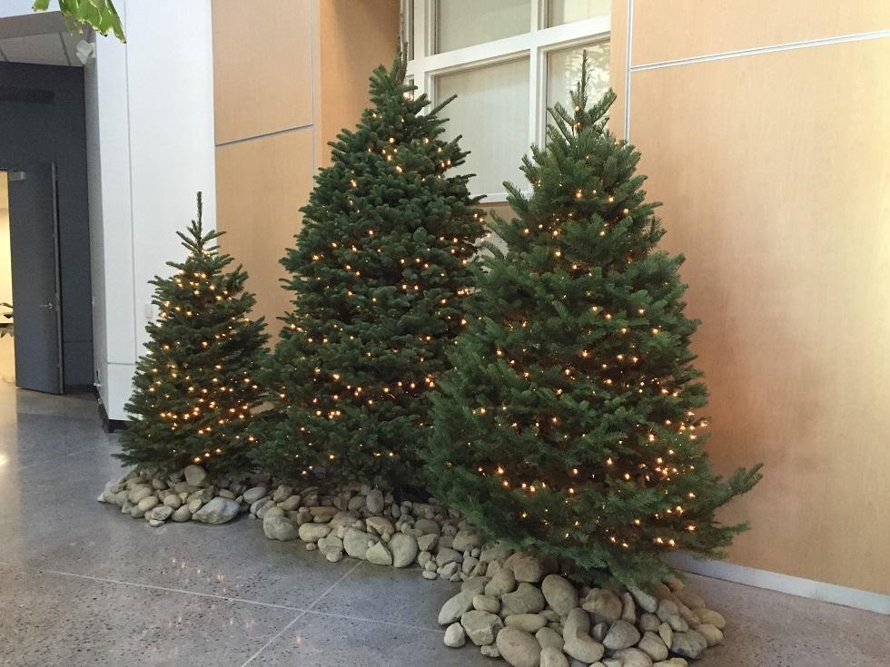 Sacramento Christmas Decor Professional Holiday Decorators